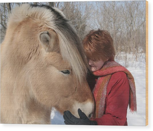 January Fjord And Friend Wood Print by Laurie With