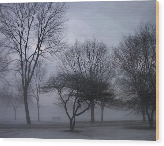 January Fog 6 Wood Print