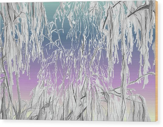 January Hoarfrost Wood Print