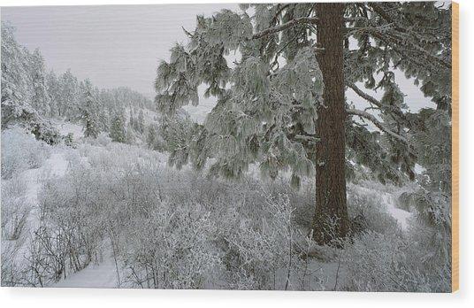 January On Kamiak Butte Wood Print by Jerry McCollum