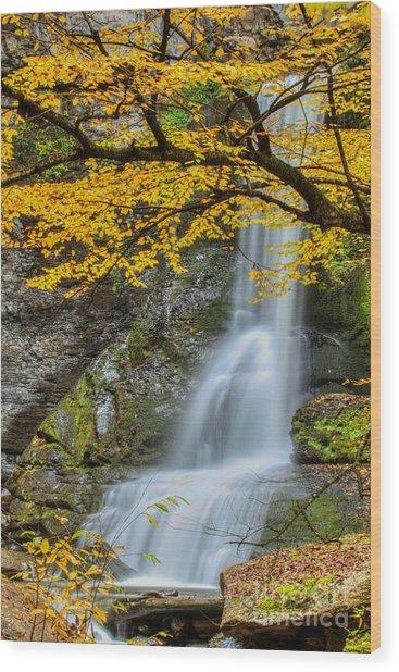 Japanese Falls Wood Print