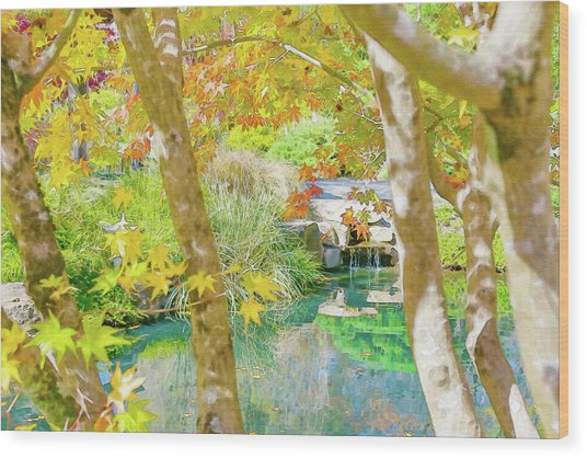 Japanese Garden Pond Wood Print