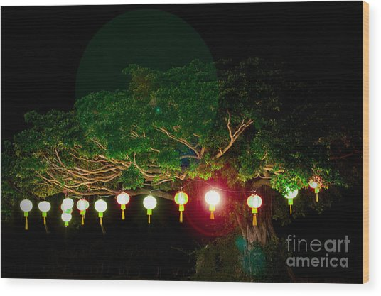 Japanese Lantern Tree Wood Print