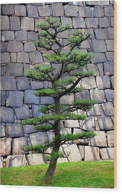 Japanese Tree Wood Print