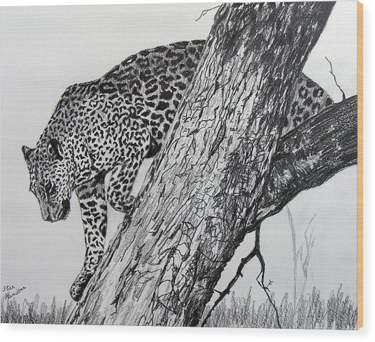 Jaquar In Tree Wood Print