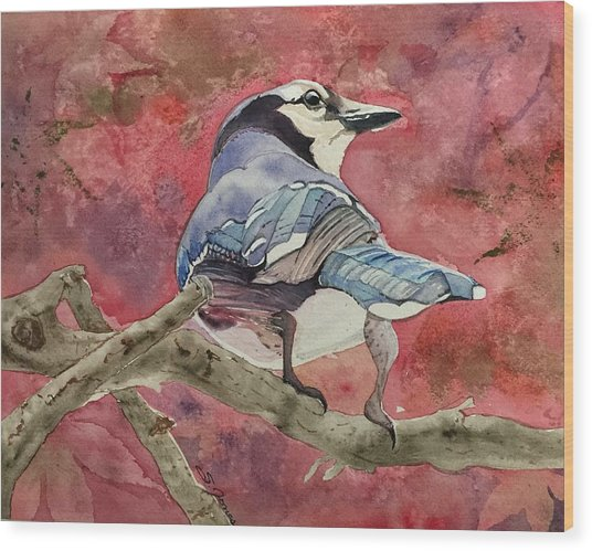 Jay In The Japanese Maple Wood Print