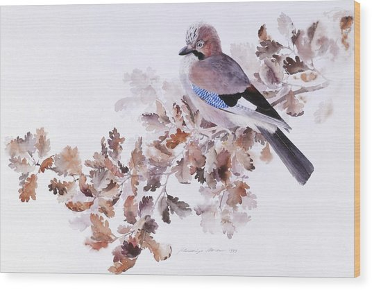 Jay On A Dried Oak Branch Wood Print
