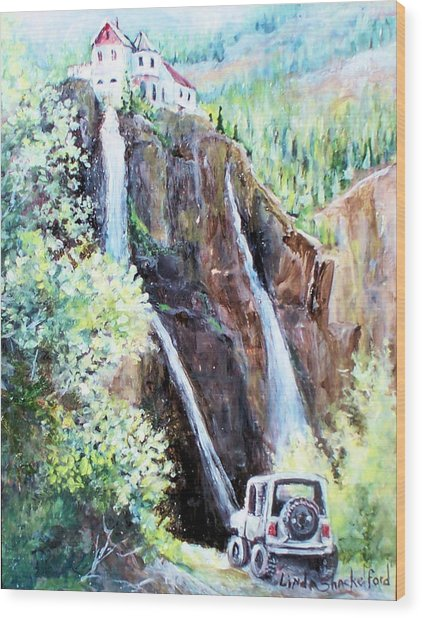 Jeeping At Bridal Falls  Wood Print