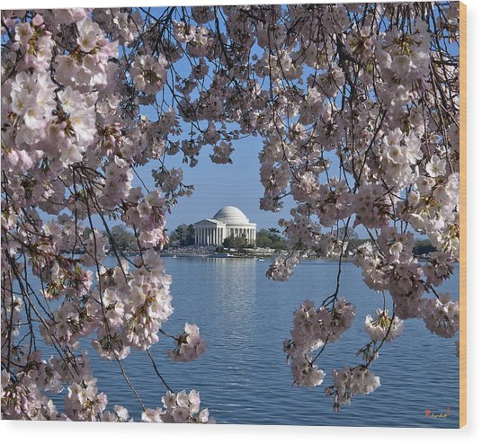 Jefferson Memorial On The Tidal Basin Ds051 Wood Print