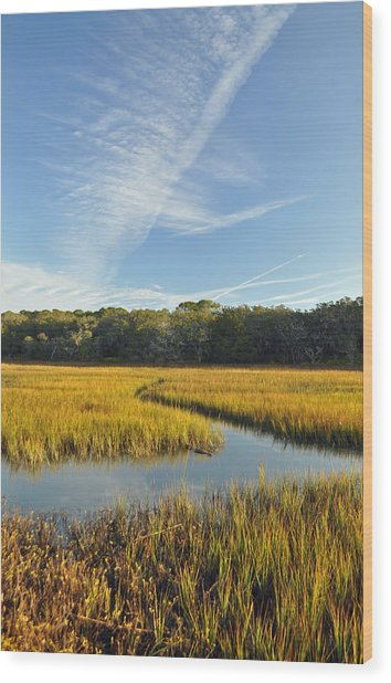 Jekyll Island Marsh High Tide And Sky Wood Print