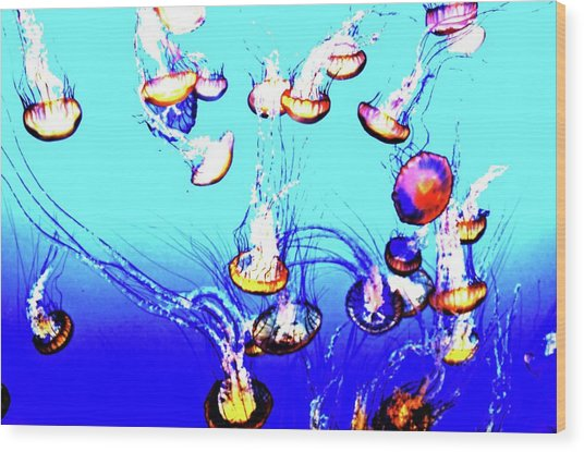 Wood Print featuring the photograph Jellyfish Dance IIII by Pacific Northwest Imagery