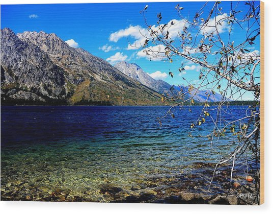 Jenny Lake Wood Print by Carrie Putz