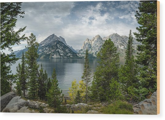 Jenny Lake Overlook Wood Print