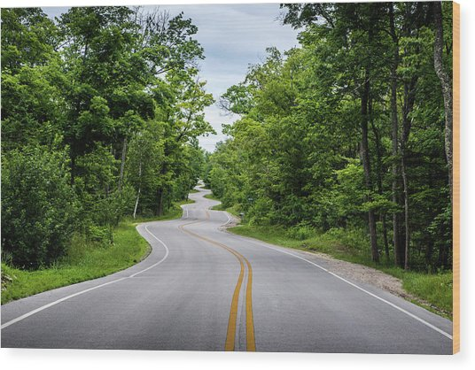 Jens Jensen's Winding Road Wood Print