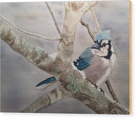 Cold Winter's Jay Wood Print