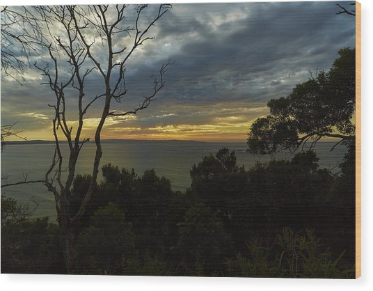 Jervis Bay Sunrise Wood Print