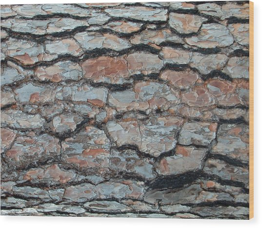 Jigsaw - Pine Tree Bark Wood Print