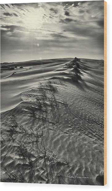 Jockey's Ridge Texture 7116 Wood Print