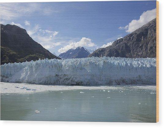 John Hopkins Glacier 14 Wood Print