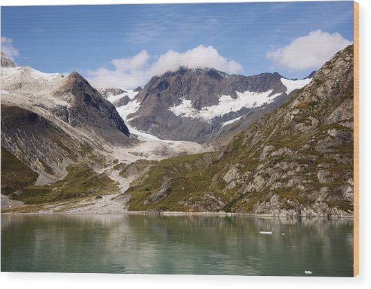 John Hopkins Glacier 5 Wood Print