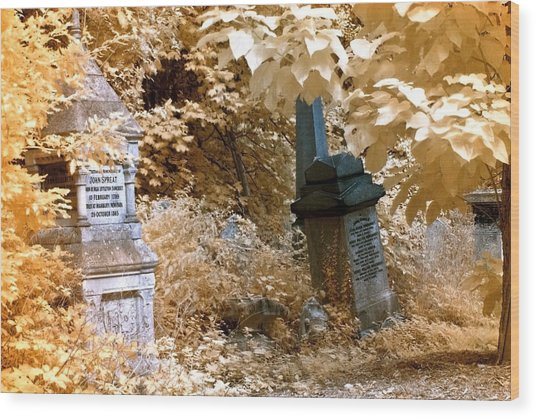 Autumnal Walk At Abney Park Cemetery Wood Print