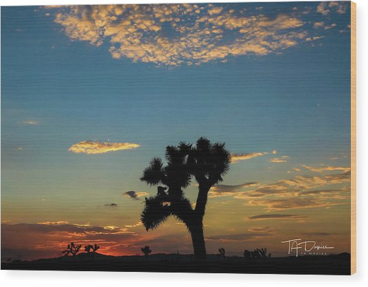 Joshua Sunset Wood Print