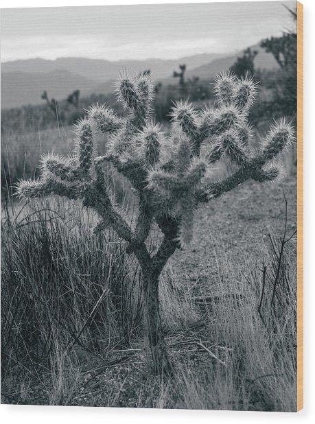 Joshua Tree Cactus Wood Print