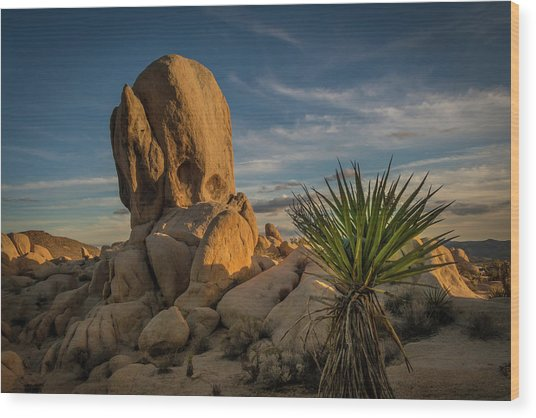 Joshua Tree Rock Formation Wood Print