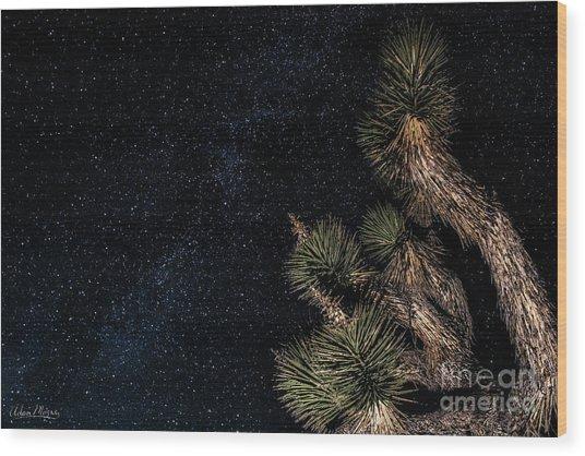 Joshua's Stars Wood Print