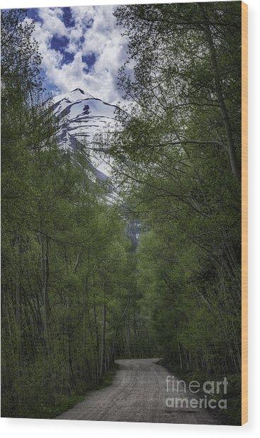 Journey Of Peace Wood Print