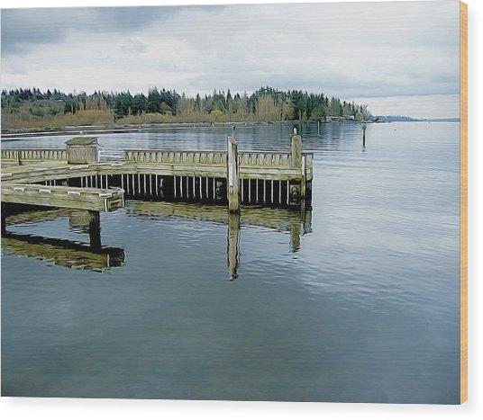 Juanita Bay In Gray Wood Print