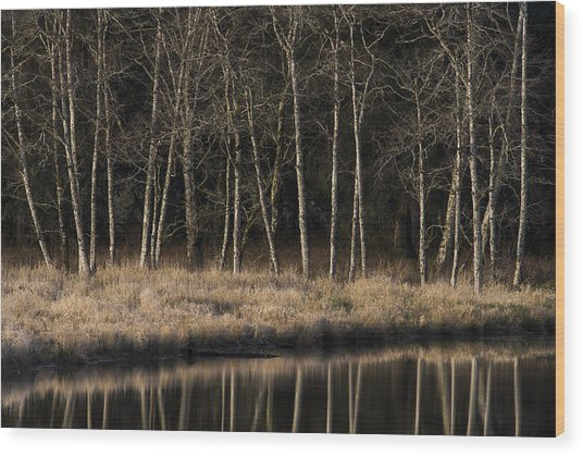 Julia Butler Hansen Refuge For The Columbian White-tailed Deer Wood Print