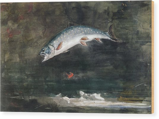 Jumping Trout Wood Print