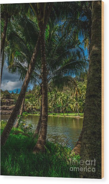 Jungle River Palms Kauai Wood Print