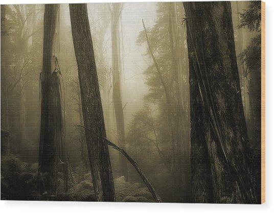 Jurassic Memories Wood Print