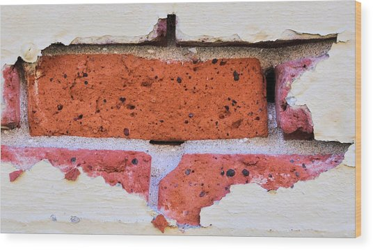Just Another Brick In The Wall Wood Print