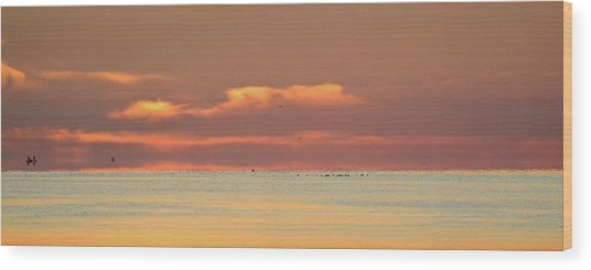 Just Before Sunrise 2  Wood Print