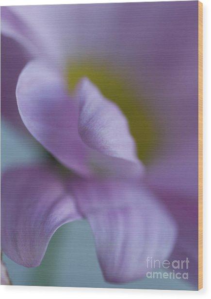 Just Petals Wood Print