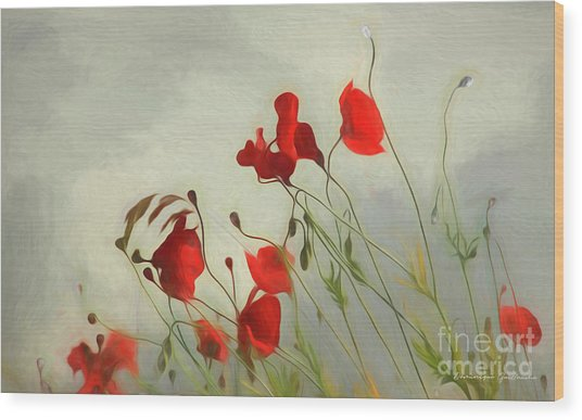 Just Some Poppies Wood Print