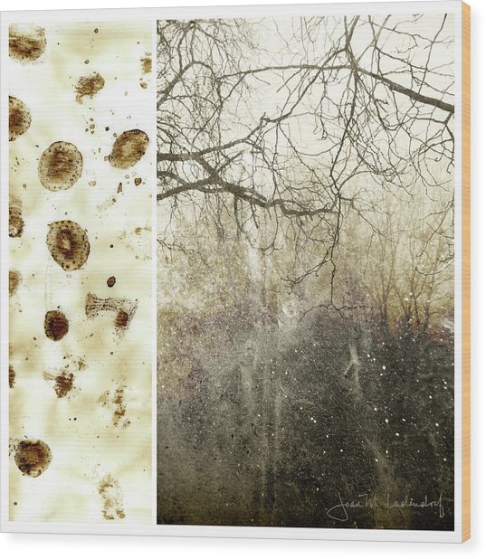 Juxtae #17 Wood Print