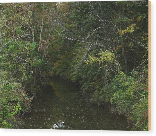 Kaaterskill Creek In Calm Wood Print