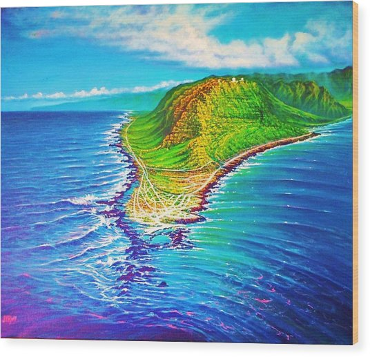 Kaena Point Refractions Wood Print