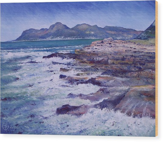 Kalk Bay And Fish Hoek  Cape Town South Africa 2006  Wood Print by Enver Larney