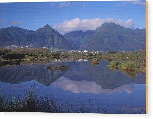 Kanaha Pond Maui Wood Print