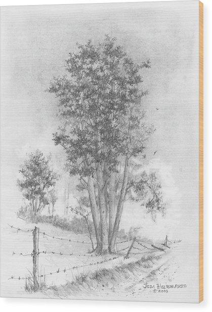 Kansas-cottonwood Wood Print