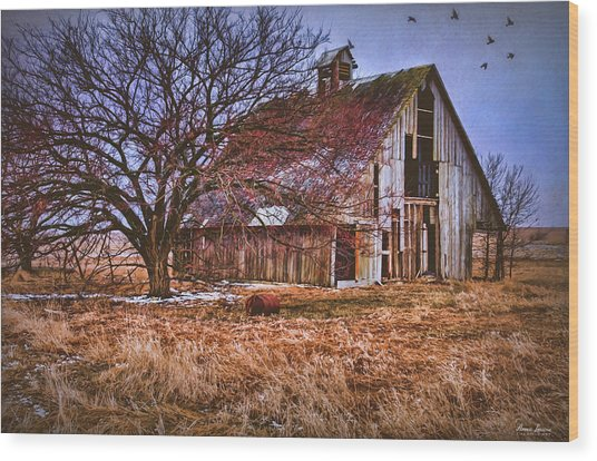 Kansas Countryside Old Barn Wood Print