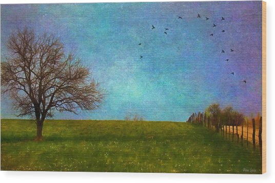 Kansas Early Spring Prairie Wood Print