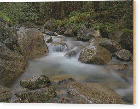 Katahdin Stream Cascades Wood Print