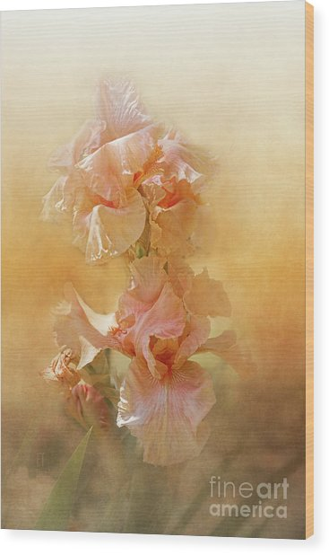 Katerina Wood Print