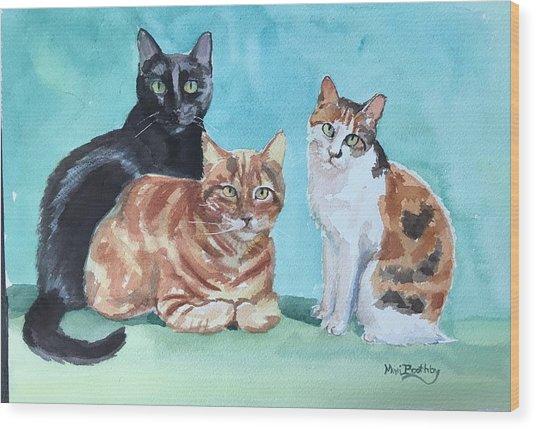Kates's Cats Wood Print